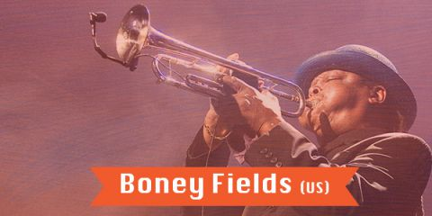 7 July 2018 - Bites Blues Band invites Boney FIELDS - BLIUZO NAKTYS - VARNIAI - (Lithuania)